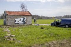 Koeienstal Lierop (11)