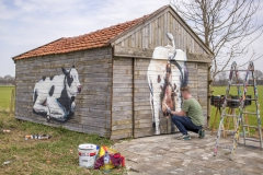 Koeienstal Lierop (12)