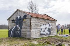 Koeienstal Lierop (15)