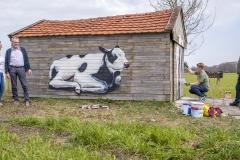 Koeienstal Lierop (20)